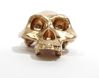 BLING! Lucy gold skull
