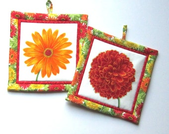 Fresh Flowers Yellow Daisy and Red Zinnia Pot Holders Set of Two