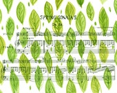 "Beethoven's Violin Spring Sonata Sheet Music with Watercolour Green Leaves Background Original 8""x12"" Illustration"
