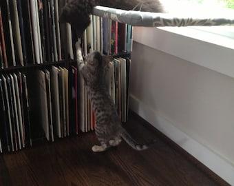 Fun Patterns - Curious Cats Window Perch