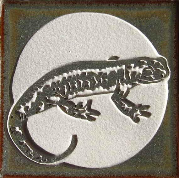 California Tiger Salamander- 4x4 Etched Porcelain Tile