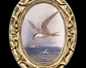 Ocean Seagulls Miniature Dollhouse Bird Art Picture 6329