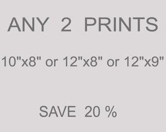 """ANY 2 PRINTS 10""""x8"""" or 12""""x8"""" or 12"""" x9"""" from an original paintings SAVE 20%"""