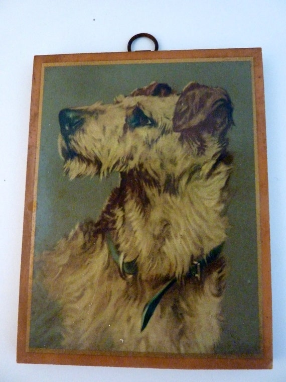 Airedale Dog Wood Plaque Decoupaged Print By Arthur Wardle