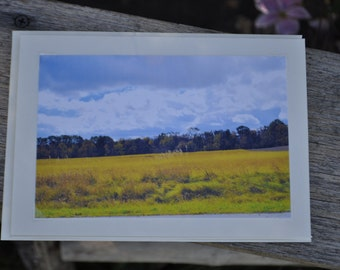 Fields of Gold - Fine Art Fall Photo Greeting Card