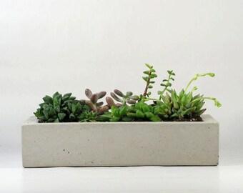 Concrete Tray/ Concrete Planter