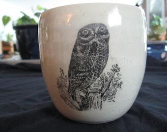 Little rock owl mug