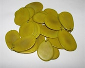 Three Chartreuse Tagua Nut Beads, Thin Slice Beads, Organic Beads, Vegetable Ivory Beads, Natural Beads, EcoBeads