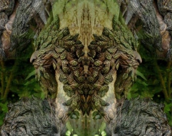 Dryad - Tree spirit greeting card