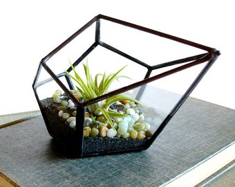 Small Terrarium Pod with Air Plant, Geometric Planter