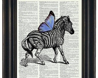 Upcycled  Dictionary Book Print  Zebra with Blue Wings on Vintage Dictionary Page 8 x 10 HHP Original Design and Concept