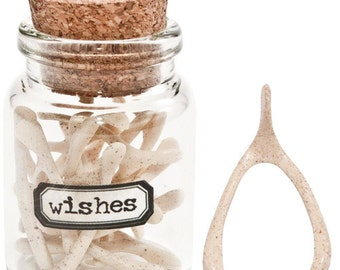 Wishbones in a Glass Vial with Cork - 15 wishbones included