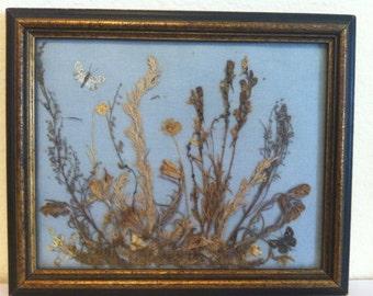 Vintage Dried Flower Art, Framed, Botanical Art, Mixed  Media