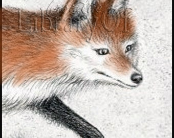 Red Fox - Personalized Self-Adhesive Bookplate - Lovely Gift - Perfect for Anyone
