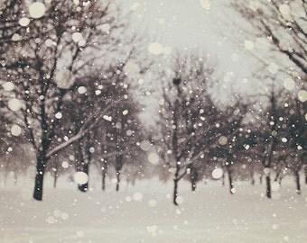 Winter decor: Snow flurries Fine Art Photography Winter Art Abstract Landscape Photography, Nature Wall art, Snow Tree wall art black white