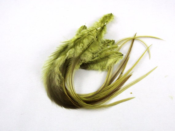12 thick long feather extensions 6 to 10 inches Olive Reduced