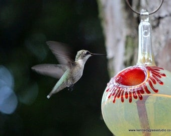 OR- The Kennedy Style Hummmingbird Feeder, The Original One Piece Drip-less Hummingbird Feeder