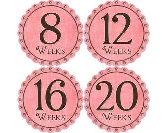 Pregnancy Stickers, Pregnancy Announcement, Weekly Stickers, Belly Stickers, Pregnancy Photo Prop, Belly Bump Stickers, Pink (G142-P)