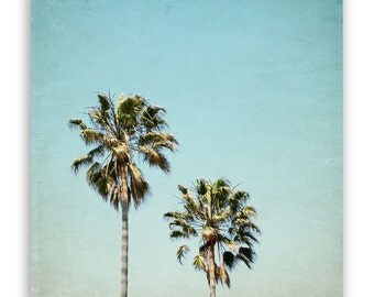"California Photography - teal photo, aqua decor, teal palm trees, California home decor - ""Two For the Sun II"" - Fine Art Photograph"