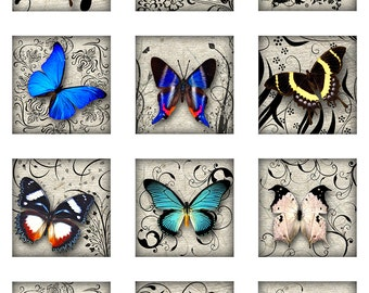 Butterflies Swirls 1 and 2 Inch Square Digital Images Instant Download Glass Resin Scrabble Tile Pendants JPEG (13-27)