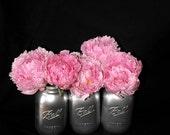 Set of 3- Silver painted ball mason jars
