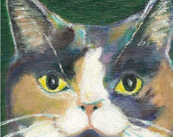 "Cat art, dilute calico, 5"" x 5"" blank card"