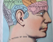 4 overlays -1900s color lithograph Medical MANIKIN from antique 1901 medical book - head, brain, skull, litho