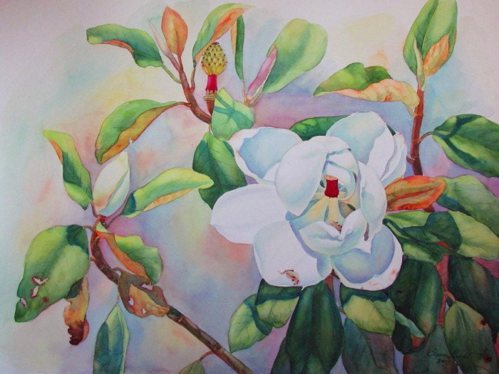 Watercolor Painting classic white Magnolia flower by an award
