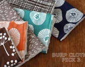 Baby Burp Cloths - Choose Your Own Set of 3 - Lotta Jansdotter Echo and Ivory Minky Dot