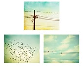 Bird on Wire Photo Set - Three Photographs - mint green prints yellow teal turquoise photography flying fly sky art pastel nursery wall art