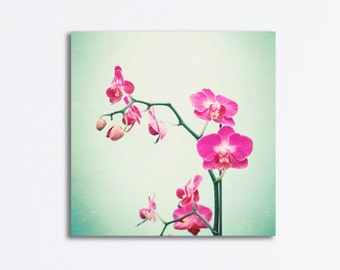 "Orchid Canvas Photography - flower pink mint green pale floral gallery wrapped canvas nature canvas wrap wall art branches decor, ""Orchid"""