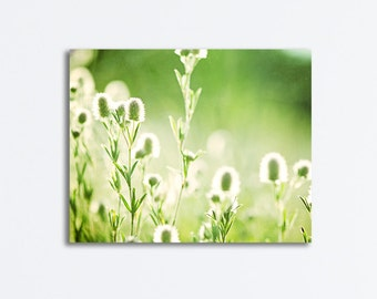 """Green Canvas Photography - nature large gallery wrap botanical print grass colorful wrapped canvas modern wall photo, """"The Echoing Green"""""""