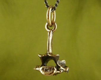 "Vertebra Necklace - Bronze Vertebra Pendant on 24"" Gunmetal Chain - Anatomical Jewelry"