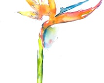 Birds of Paradise, Birds of Paradise Painting, Hawaii Art, Watercolor Birds of Paradise, Watercolour Flowers, Exotic Flowers