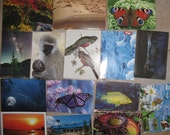 Lot set 113 postcards. Views of nature, animals, birds, fish, national park. Used. Written. Stamped.