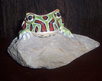 Hand sculpted Pac-Man Frog, painted realistically