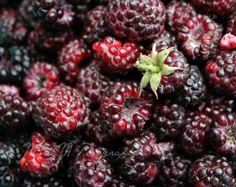 Black Raspberry, Purple, Wine, Summer, Kitchen, Farmers Market, Country, Farmhouse, Home Decor, Original Fine Art Photograph, Print