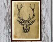 Wild deer print Old paper Antiqued decoration vintage looking AK51
