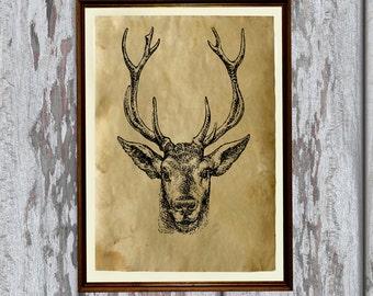 Wild deer print Old paper Antiqued decoration vintage looking AK51