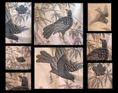 ANTIQUE BULLION EMBROIDERY/Raised Metallic Silkwork//French Wall Hanging/Textile/Birds/Flowers/Silver/Bronze/Home Decor/Gift for Her/for Him