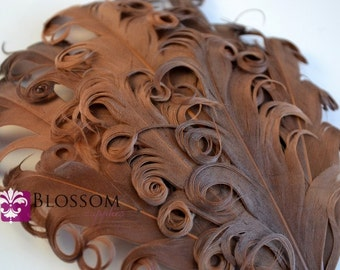 CLEARANCE - 1 Curly Nagorie Feather Pad - Goose Feather Pad - Brown DIY Feather Baby Headband Hat Supplies Wholesale Crafts - Curly Feathers