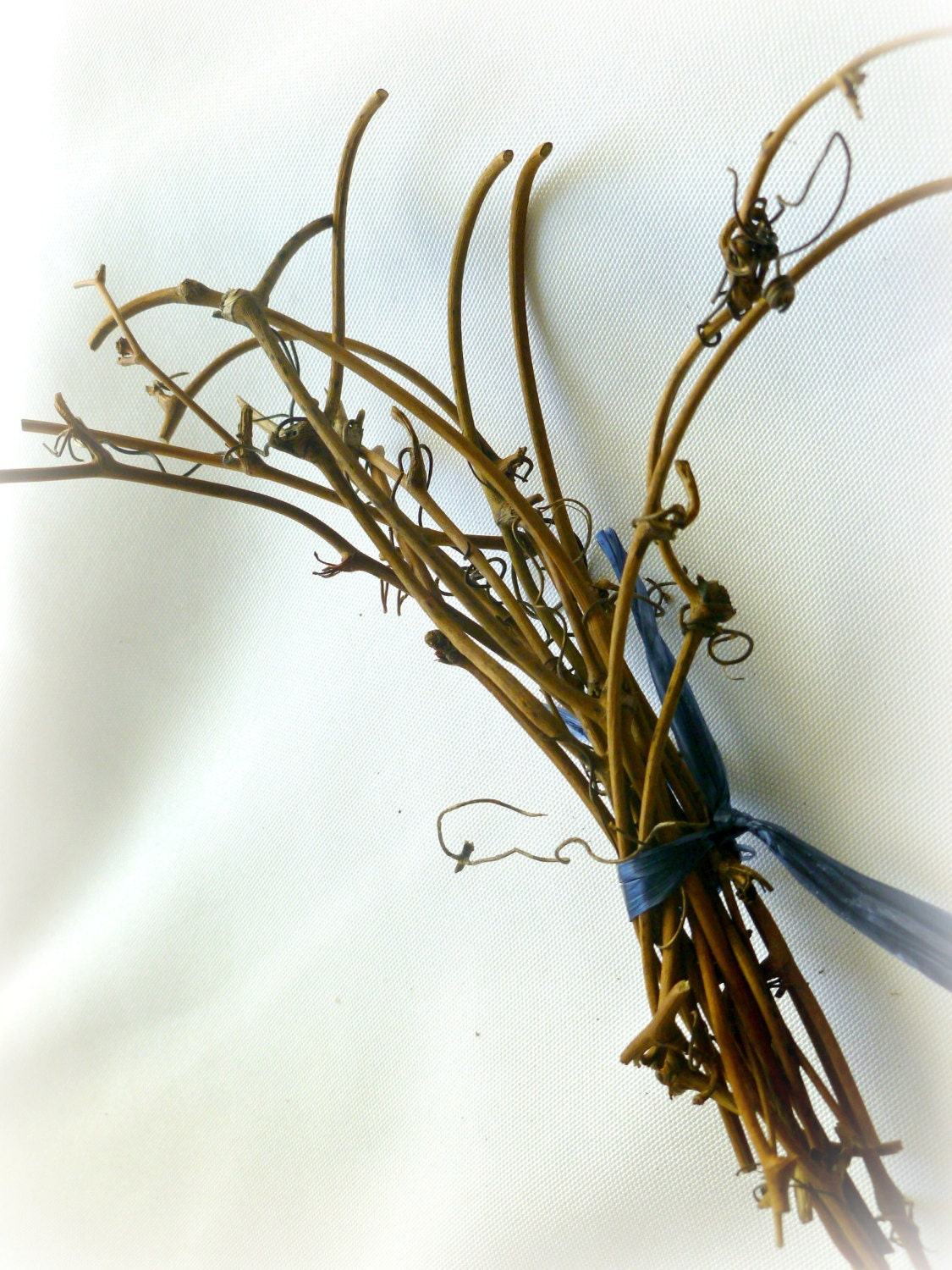 Rustic home decor garden party grapevine twigs 2 bundles for Twig decorations home