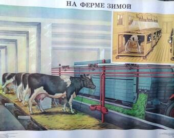 Botanical School Poster - Farm Animals
