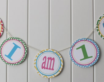 LITTLE OWL Theme Birthday Highchair Banner 1st Birthday Party - Party Packs Available