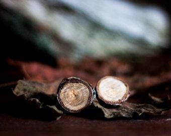 real wood bark earrings botanical nature natural eco friendly post. studiobotanica