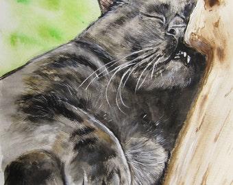 Sleeping Cat Watercolor Print