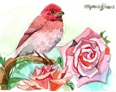 ACEO Limited Edition 3/25- Roses,