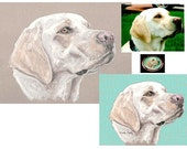 custom pet portrait package including jewelry setting
