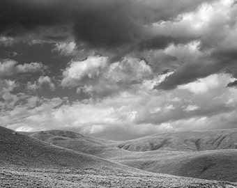 "The Rolling Hills of Lamar Valley in Yellowstone National Park 16""X24 photograph."
