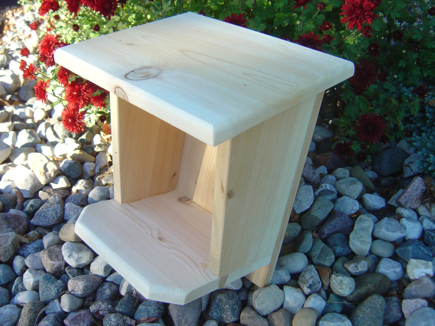 Robin Mourning Dove Swallow Nest Box